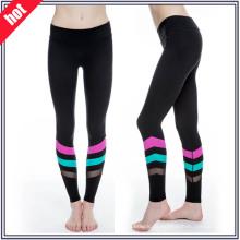 Dry Fit Mulheres Yoga Gimnasio Desgaste Desgastar Sexy Fitness Yoga Calças
