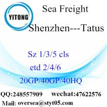 Tatus에 심천 포트 바다화물 운송