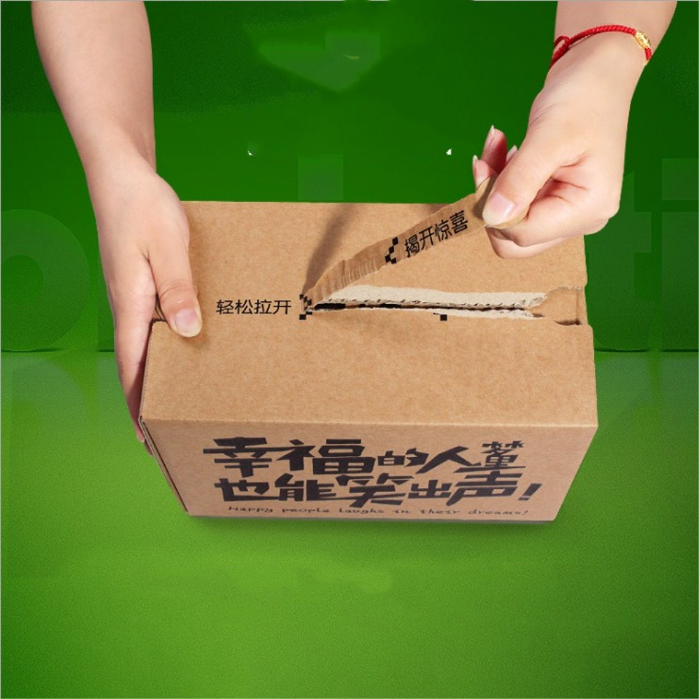 Zipper Carton Box (2)