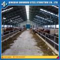 Structure en acier léger Triton de mouton Ferme bovine Fermette en bétail Construction