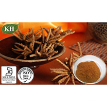 High Nutrition Supplements Cordyceps Extract Polysaccharides 10%, 20%, 30%, 40% UV