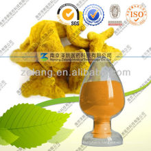 Curcumin Price for Food and Pharmaceutical Grade