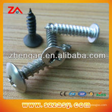 High quality Carbon steel screw