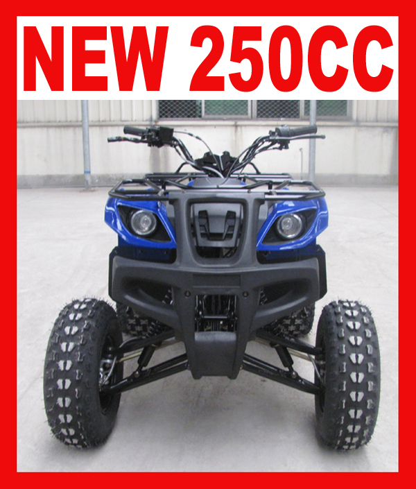 New 250cc ATV for Farm Use with High Quality
