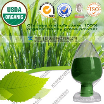 Chinese Manufacturer 100% Organic Barley Grass Powder