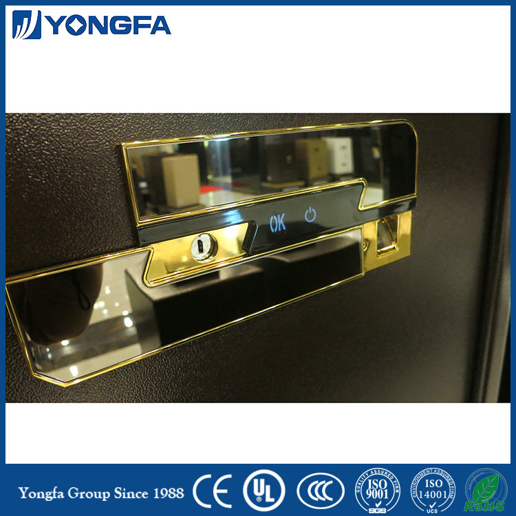 Luxury fingerprint safe