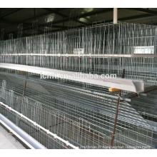 Équipements de volaille de bonne qualité pour la cage à poulet de poulet