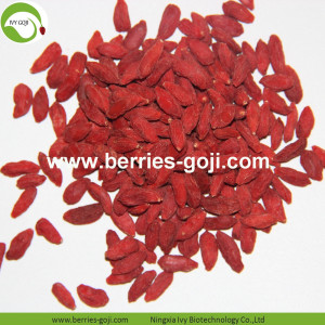 Factory Supply Healthy  Top Quality Pack Goji