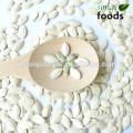 Buy new crop Pumpkin Seeds In Shell