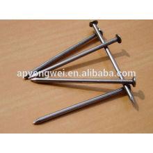 Common Wire Nail Factory / polierte gemeinsame Eisen Nägel