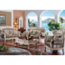 Sofá da sala de visitas para a mobília Home (D955)