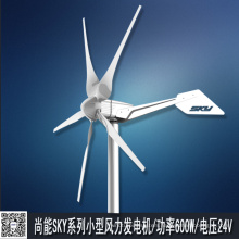 Home Use 600W Wind Turbine Generator (SKY 600W)