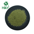 Classic High Quality moringa leaf powder extract
