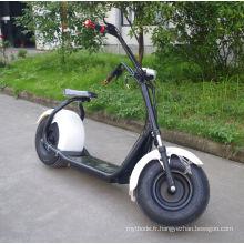 Chine fournisseur 1000W Scooter électrique avec Bluetooth (JY-ES005)