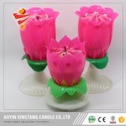 Doğum günü mumları dönen müzik Lotus çiçeği