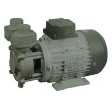 Bomba de combustible de la serie Tsr para uso a alta temperatura