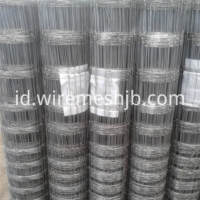 Hot Dip Galvanized Field