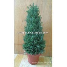 Bonsai del árbol de navidad artificial para la decoración casera, planta artificial