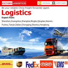 Agente de envío/flete promotor logística de China en el mundo de la logística