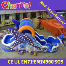 Deep Sea Inflatable Water Slide Bounce House Jump Water