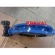 Replaceable Seat Double Flange Butterfly Valve