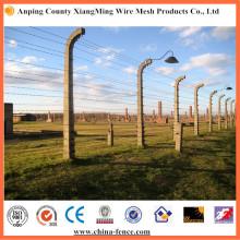 El alambre de púas de calidad superior 12 # X14 # (XM-BW2)