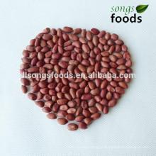 Grãos de amendoim indiano de alta qualidade
