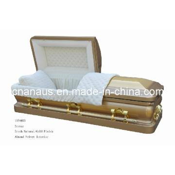 Caixão de bronze (ANA)