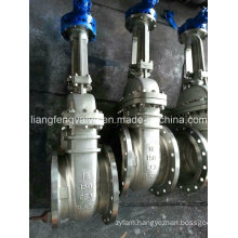 Stainless Steel Gate Valve with Flanged Ends