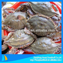 Eine breite Palette von billigen blauen Schwimmen Krabben