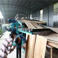 High Quality Biomass Roller Veneer Dryers Machine