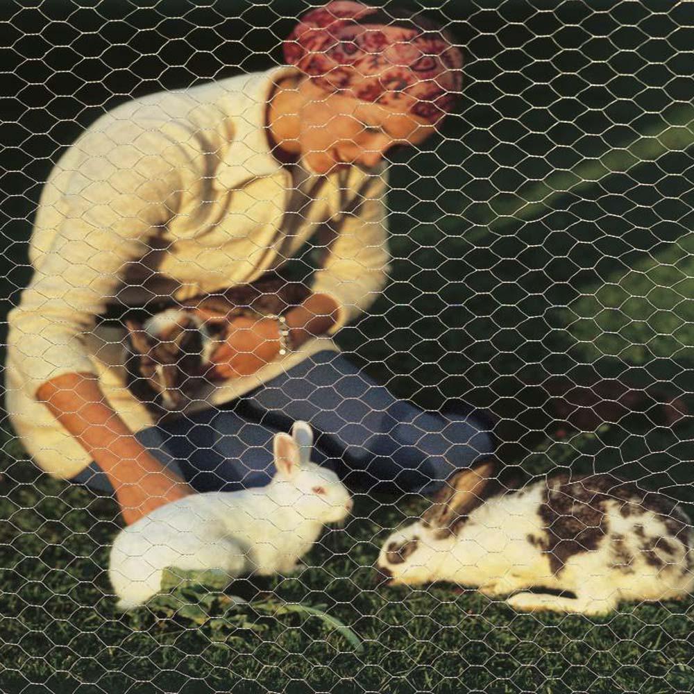 Galvanisierter konkurrenzfähiger Preis Kaninchen Sechskant ...