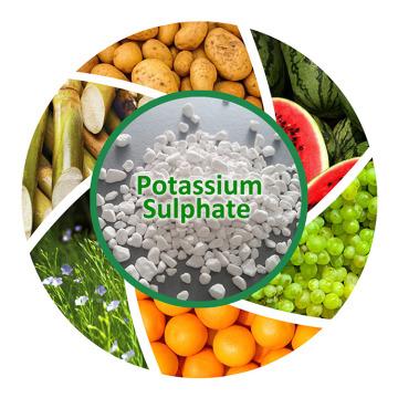 Crystal Potassium Sulphate Sop Price Fertilizer