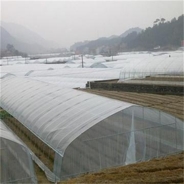 Agriculture Single Tunnel Plastic Film Greenhouse
