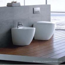 Washdowm Пол-установленный туалет (DS1103)
