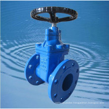 russia standard double disc cast iron gate valve