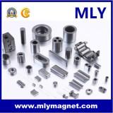 Permanent Neodymium Motor Magnet (MLY089)