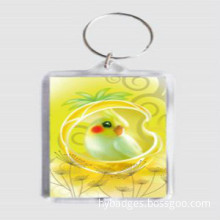 Custom Key Chain, Acrylic Key Chain (GZHY-KC-009)