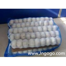 20kg Mesh Bag Packing Pure White Garlic