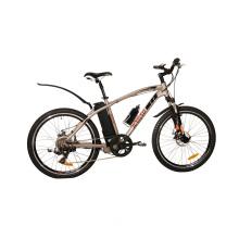 Cool Perfect E-Bicycle Young Man Riding (JB-TDE17Z)