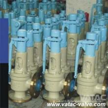CS / Ss Cl600xcl300 Soupape de décharge de sécurité pour gaz naturel