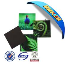 Promotional Gift 3D Plastic Fridge Magnet
