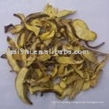 dried mushroom boletus