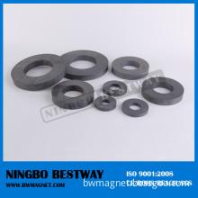 Ring Ferrite Magnet/Ceramic Ring Magnet