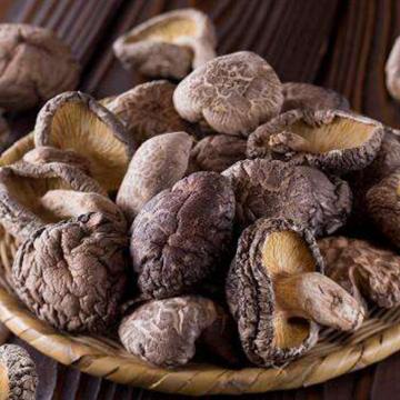 Champignon séché à haute valeur nutritive