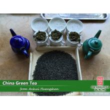 Fábrica de chá verde para Marrocos, Argélia, Níger, Mali, Mauritânia, França, Bélgica, Rússia com uma equipe de alta eficiência