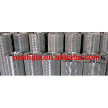 50x50mm Welded Wire Mesh galvanized
