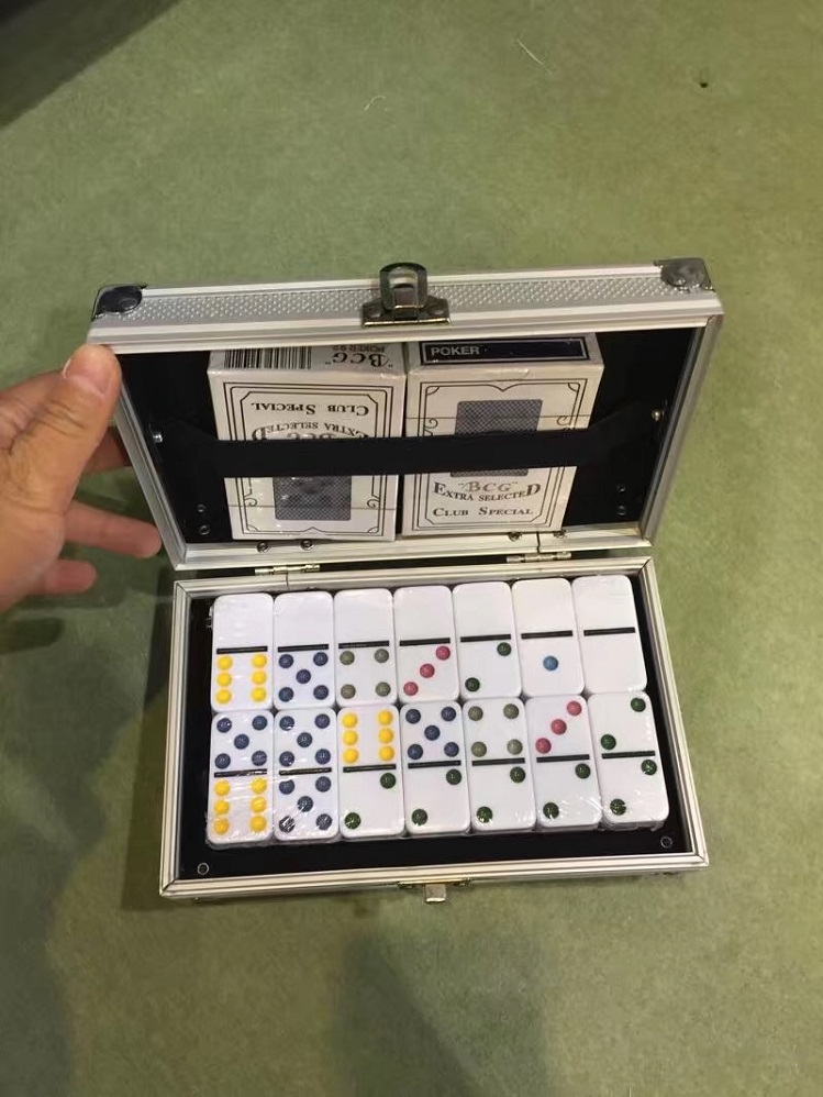 Plastic Dominoes In Aluminum Box