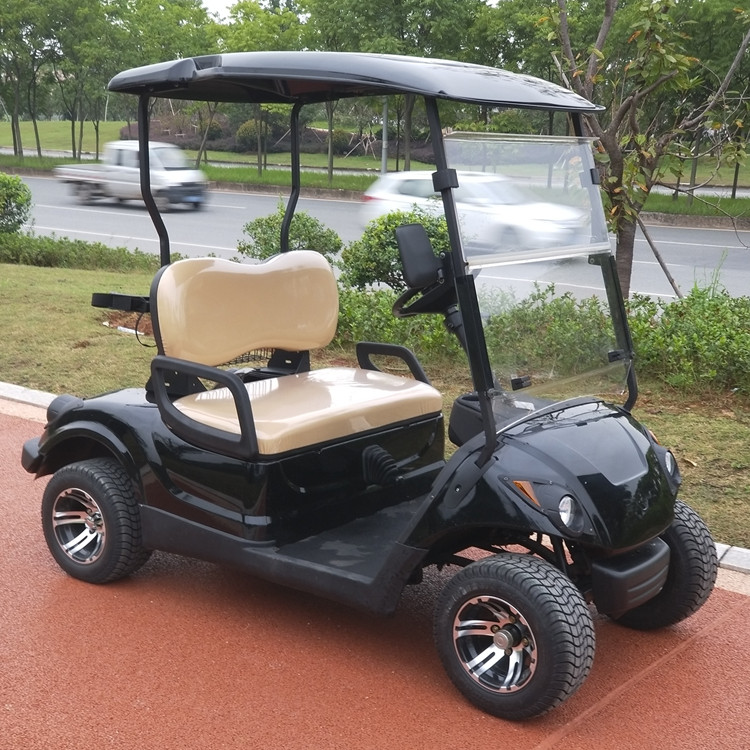 2 seater gasoline powered golf carts