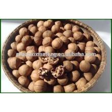 Venda quente alibaba manufactory noz natural de qualidade superior
